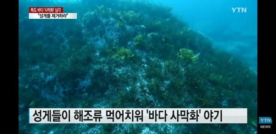 [유머] 다가오는 바다 사막화 현상 -  와이드섬